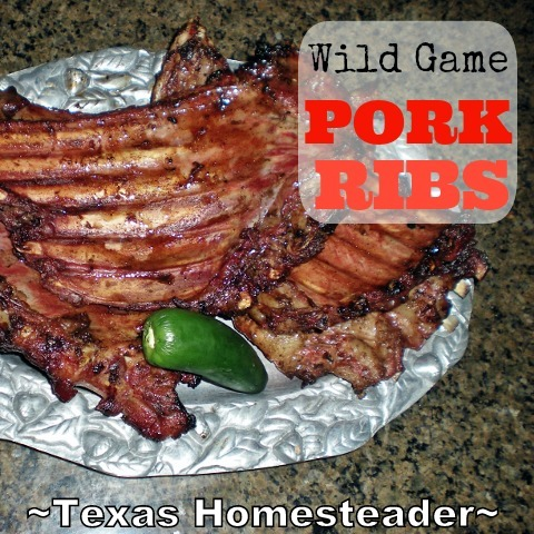 RancherMan is an accomplished hunter and wild pork is plentiful here in NE Texas. Today he invited over dinner guests & grilled up some ribs! #TexasHomesteader