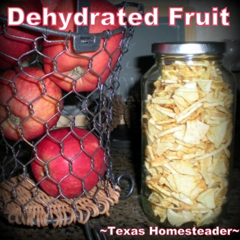 Jar of dehydrated apples. After finding a great deal on apples I dehydrated them into soft chewy chunks. Good for me, good for my wallet & good for the environment! #TexasHomesteader