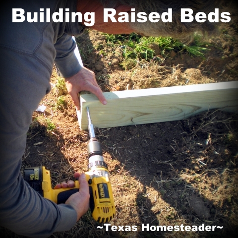 Building Raised Beds. My old raised beds were in need of replacement and I wanted a more efficient design. See how we constructed our raised beds. #TexasHomesteader
