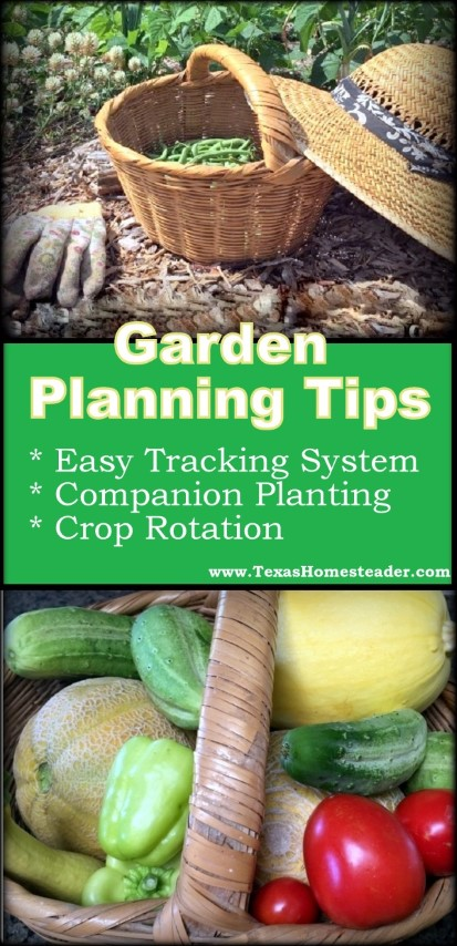 Garden Planning. How do I track previous planting info? Or companion planting? Or crop rotation? Come see my garden-planning tips. #TexasHomesteader
