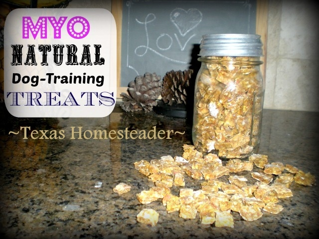 I made training treats for our ranch dog using wholesome ingredients I already had in the house. She LOVES them! Check out my recipe. #TexasHomesteader