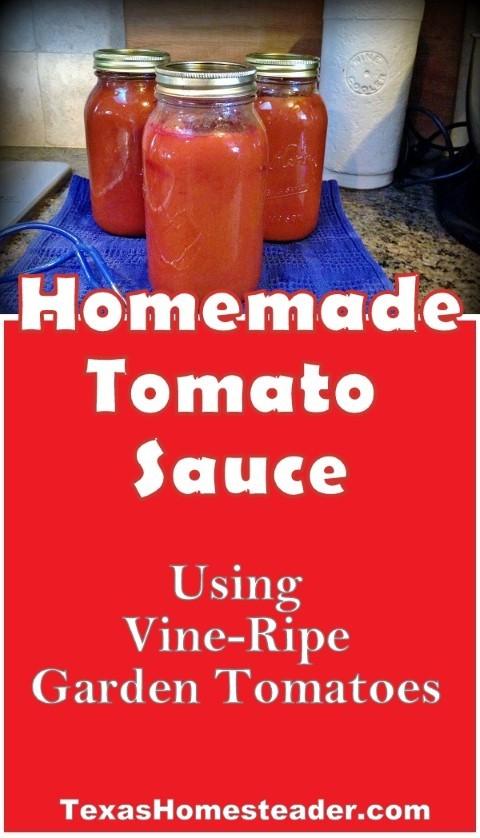 Homemade tomato sauce made from fresh ripe garden tomatoes. #TexasHomesteader
