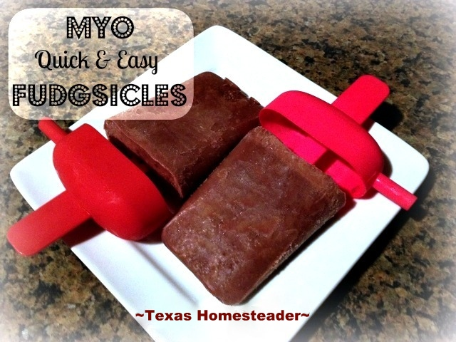 Quick And Easy Healthier FUDGESICLES! See this recipe for making your own inexpensive yet healthier version of a cold, delicious fudgesicle. #TexasHomesteader