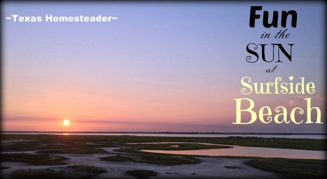 What a fun week we had at Surfside Beach in south Texas. We rented a beach house & enjoyed the beach too. Come see what fun we had! #TexasHomesteader