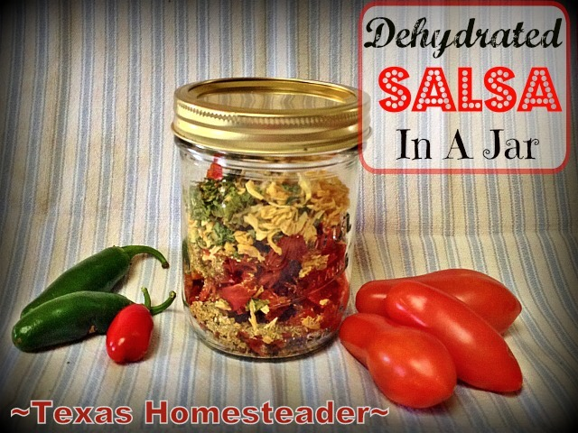 I mixed up a batch of dehydrated salsa using dehydrated veggies from my garden & my own dry salsa mix. Just pour in hot water & stir! #TexasHomesteader