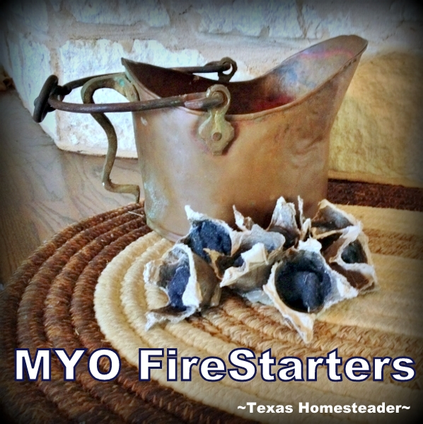 Fire starters can be made in a cardboard egg carton filled with lint and melted wax. #TexasHomesteader