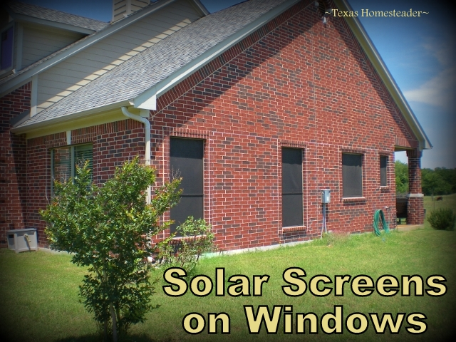 We made our own solar screens in an afternoon! Read how solar screens save you money keeping that summer heat OUTSIDE where it belongs! #TexasHomesteader