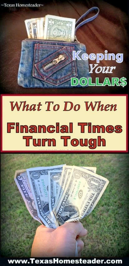Easy steps to take when financial times turn tough. Simple things to save money NOW! #TexasHomesteader