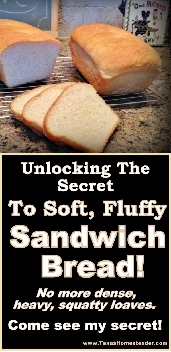 Unlocking the secret to soft, fluffy homemade bread. No more dense, heavy loaves. Come see my secret. #TexasHomesteader