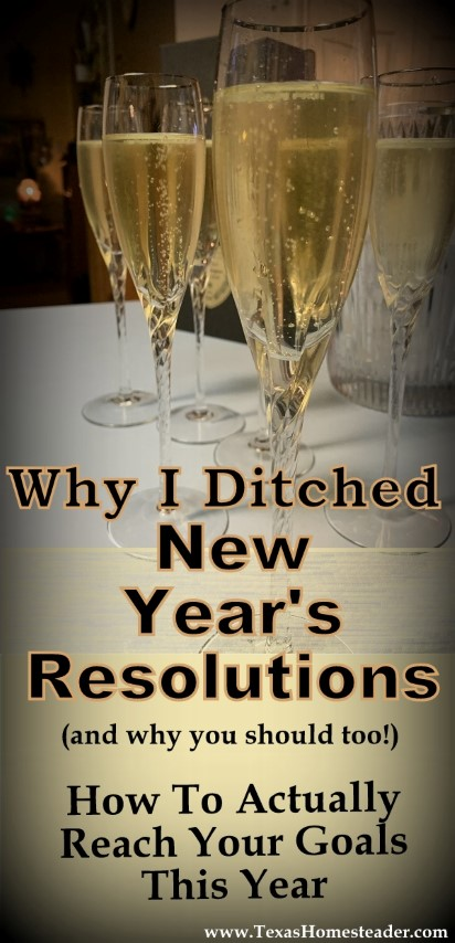 Why I ditched New Year's Resolutions (and why you should too) How to actually achieve your goals this year. #TexasHomesteader