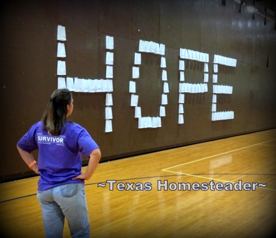 Relay for Life - A Personally Meaningful Event for me. Why Do I Do It?? HOPE! #RelayForLife - #CancerSucks - #WalkForACure - #TexasHomesteader