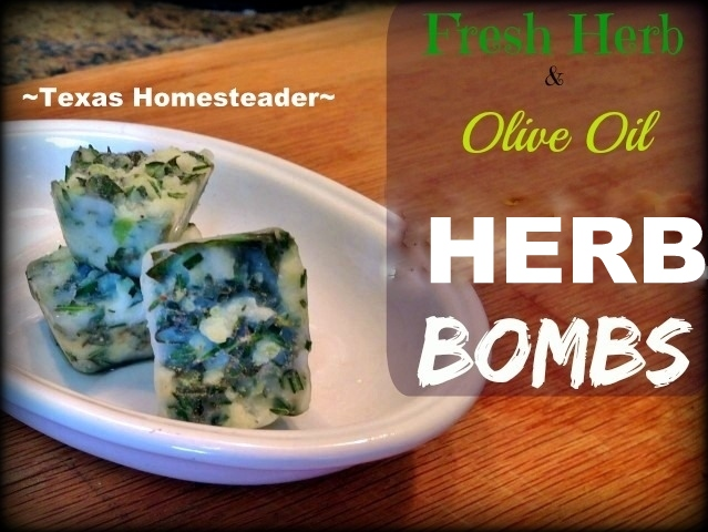 'HERB BOMBS' made from minced herbs and olive oil makes it easy to have your own convenient flavoring right in your own freezer! #TexasHomesteader