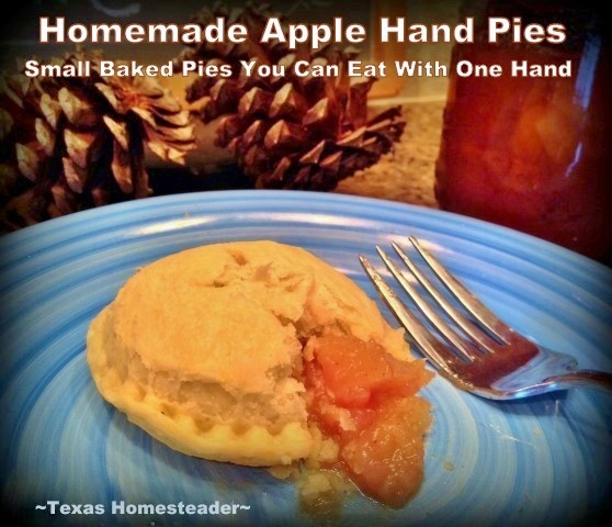 HOMEMADE BAKED APPLE HAND PIES (little apple pies you can eat with one hand) are a quick homemade dessert that's sure to please! #TexasHomesteader
