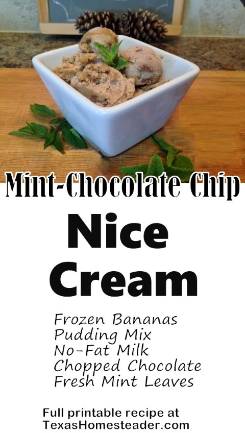 I make Mint Chocolate Chip 'Nice Cream' using frozen bananas, fresh mint, pudding mix, milk and chopped chocolate/nuts candy bar. #TexasHomesteader