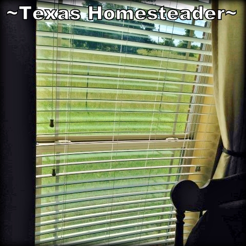 Blinds positioned to let in light, not heat. There's a right & wrong way to position mini blinds to allow light into your home while blocking the sun's heat Check this Homestead Hack and STAY COOL! #TexasHomesteader