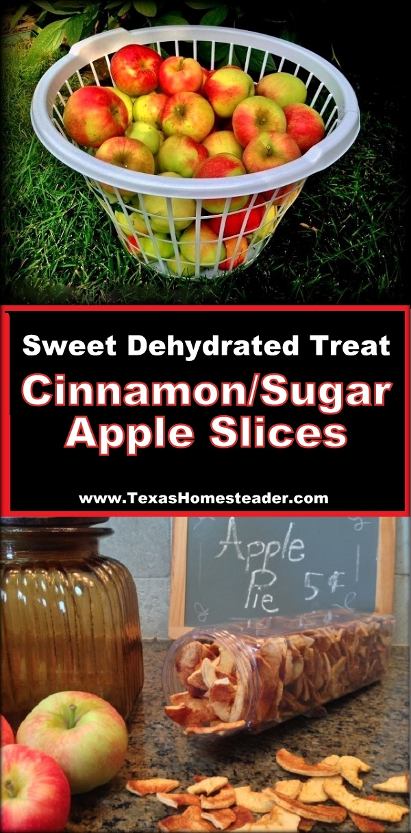 DEHYDRATED CINNAMON/SUGAR APPLE CHIPS - A Crispy Delicious And Healthy Snack For Your Family. Preserve The Harvest! #TexasHomesteader