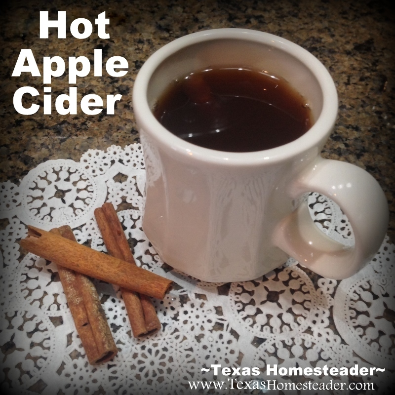 HOMEMADE APPLE CIDER preserved in a water-bath canner. I can enjoy it all winter, steaming hot in a mug and stirred w/a cinnamon stick #TexasHomesteader