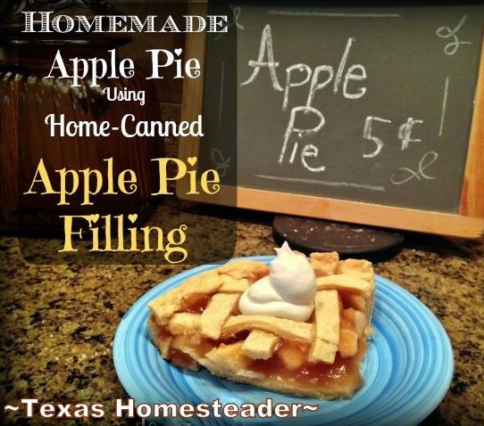 HOMEMADE APPLE PIE Made With Home-Canned Apples. Since the apples have already been processed through canning, this dessert is quick! #TexasHomesteader