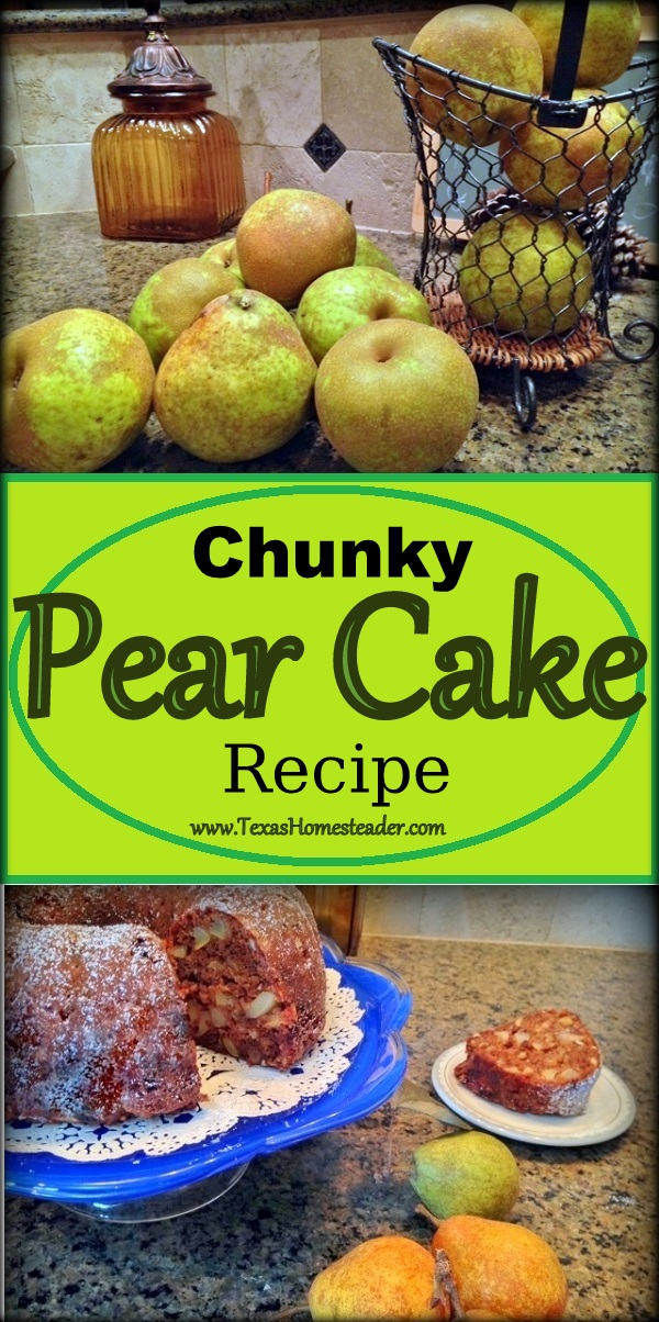 Taste of Fall: FRESH PEAR CAKE. Pear cake?? It's delicious, all pear/cinnamon fall tasting. A great way to use this season's pears #TexasHomesteader