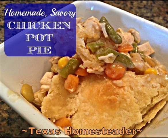 1 CHICKEN, 6 WAYS - Using It ALL! Thinking outside the box I fed my family several delicious meals with just 1 chicken and wasted nothing. #TexasHomesteader