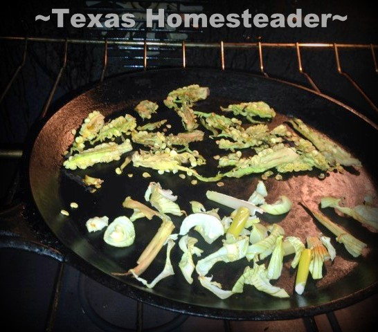 Homestead Hack: I'm using residual heat to dehydrate small amounts of food for FREE! #TexasHomesteader