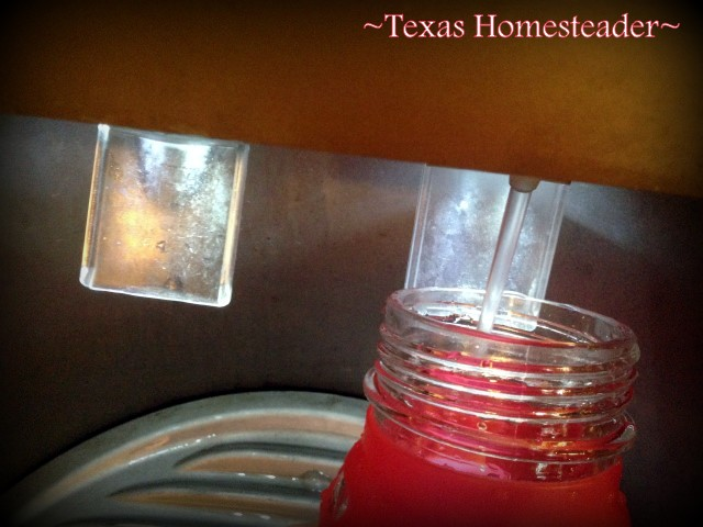 Easy to fill. I hate plastic, and I hate disposable water bottles or cups. I'm reviewing a 60% Recycled GLASS reusable water bottle - see what I found. #TexasHomesteader