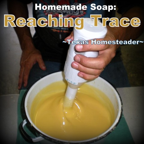 Homemade Soap - reaching trace. COLD PROCESS LAVENDER / ROSEMARY SOAP. Making homemade soap is easy and fun, and makes great gifts! See my recipe complete with photos. #TexasHomesteader