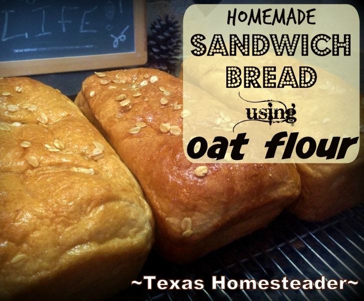 SOFT OATMEAL SANDWICH BREAD. I've amended our favorite KitchenAid bread to include a bit of oat flour. The result is DELICIOUS! #TexasHomesteader
