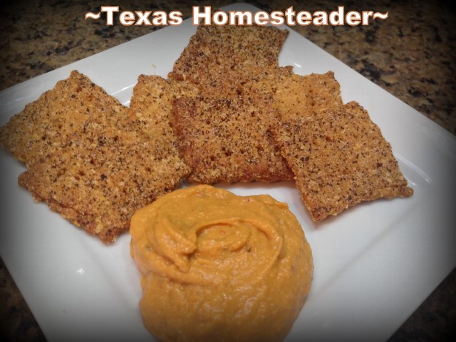 RECIPE: EASY SAVORY HOMEMADE CRACKERS - heavier than a saltine they worked perfectly for my homemade hummus. Give 'em a try! #TexasHomesteader