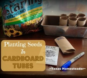 Start Your Veggie Garden Early. I plant heirloom seeds in cardboard tubes & have seedlings in the spring. Check Out What I Use For An Indoor Greenhouse! #TexasHomesteader