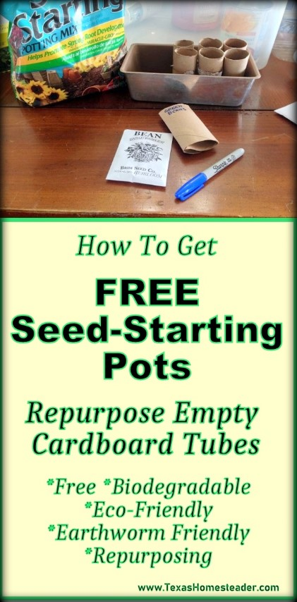 Looking for an eco-friendly and FREE seed-starting pot? Save those empty cardboard tubes. #TexasHomesteader