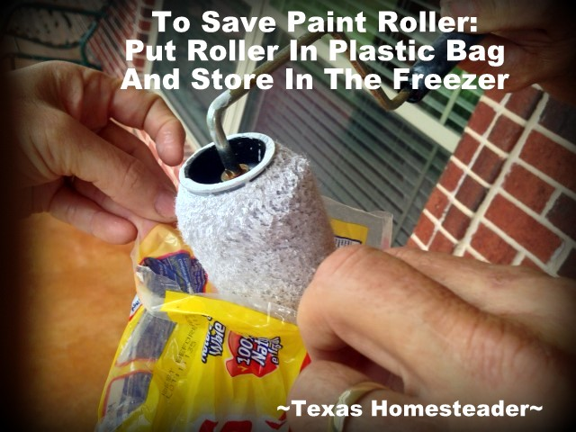 Homestead Hack: EASILY SAVING PAINTING SUPPLIES - see how we preserve brushes to resume painting at a later date - you're gonna love this! #TexasHomesteader