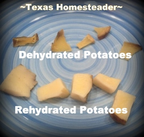 Dehydrated cubed potatoes on top compared to REhydrated potatoes on bottom of photo. #TexasHomesteader