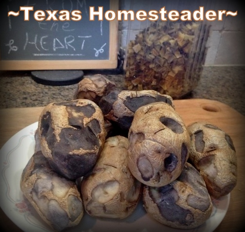 Potatoes not cooked long enough will turn black where cut. #TexasHomesteader