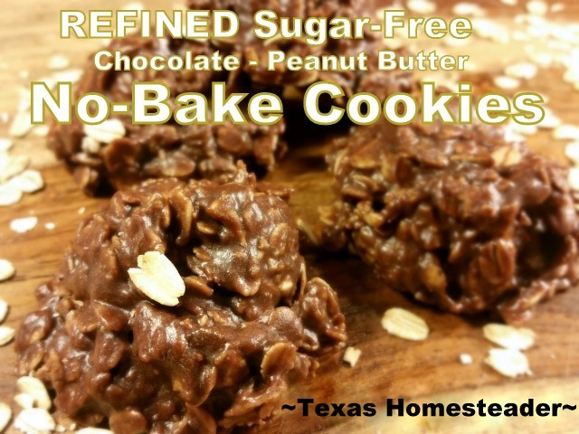 Refined-Sugar-Free Chocolate Oat Peanut Butter NO BAKE Cookies. Ashley shares TWO SUGAR-FREE CHOCOLATE RECIPES! Whoever said healthy couldn't be DELICIOUS? Check out these sugar-free recipes! #TexasHomesteader