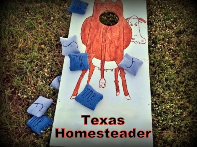 We wanted to make our own custom Cornhole Game for our family reunion. Thankfully it was EASY and it turned out way cute! Check it out. #TexasHomesteader
