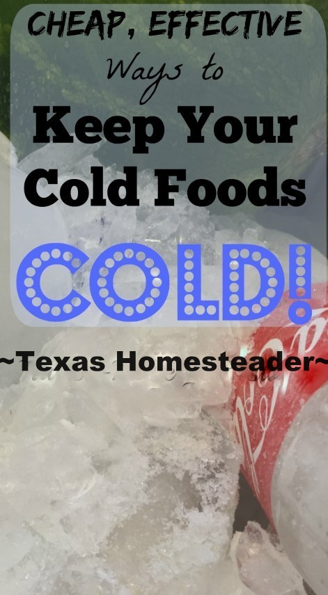 Keeping Food Cold! Let's talk food safety when the weather turns hot. Tips for keeping your cold dishes safely chilled on the cheap! #TexasHomesteader