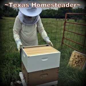 Checking The Beehives. It's been recommended we all practice social distancing for a while to keep everyone healthy. Come see what a day on the homestead looks like. #TexasHomesteader