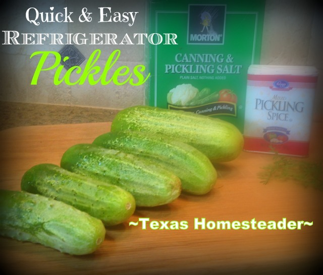 One Quart Refrigerator Sweet Pickle Recipe. Lightly sweet and crisp, this recipe is good for a single quart jar at a time! #TexasHomesteader