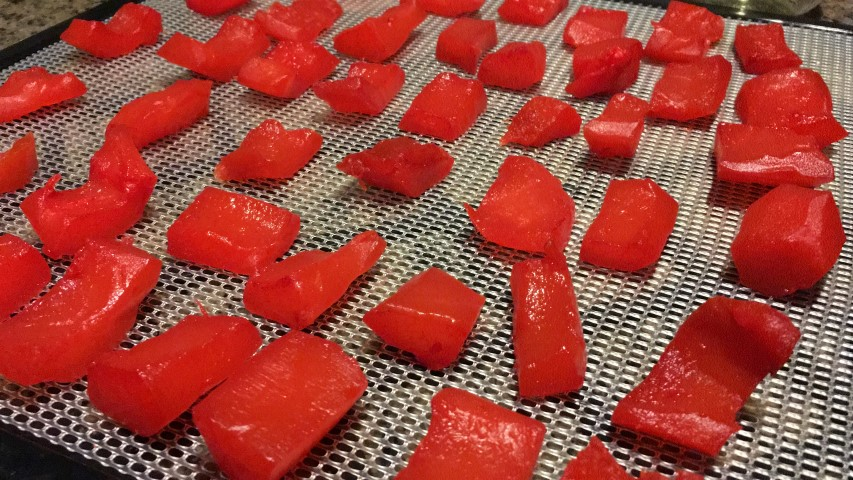 cherry flavored chews from overgrown garden squash