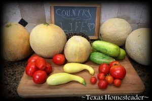 Gardening using raised beds is a great way to grow your own vegetables. #TexasHomesteader