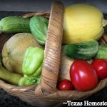 Easiest Self-Sufficiency Steps - grow your own food. Many are trying to practice self sufficiency these days. Come see how to save money on groceries, necessities, and make things yourself #TexasHomesteader