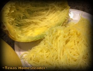 Do you love spaghetti squash as much as we do? Check out this easy cheesy spaghetti squash lasagna. Quick, easy and so good! #TexasHomesteader