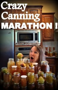 Crazy Canning Lady had a Canning Marathon trying to FINALLY deal with the fresh produce. Getting there was a comedy of errors! #TexasHomesteader