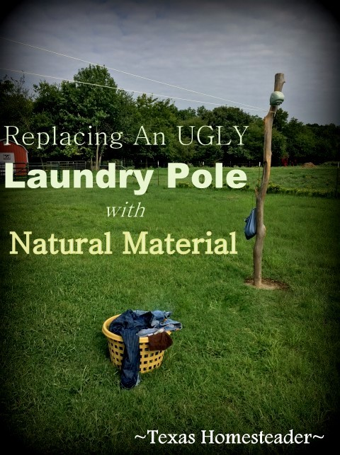 We replaced our ugly laundry pole something more in step with our natural surroundings. You know my battle cry: Use Whatcha Got! #TexasHomesteader