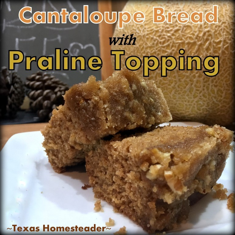 If you have extra fresh cantaloupe, make this Sweet Cantaloupe Bread with Pecan Praline Glaze. DELICIOUS and so easy! #TexasHomesteader