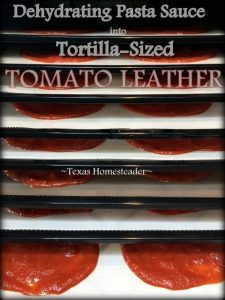 Recently I had leftover pasta sauce so I decided to make some tortilla-sized pizza leather. I'll use them on our tortilla pizzas! #TexasHomesteader