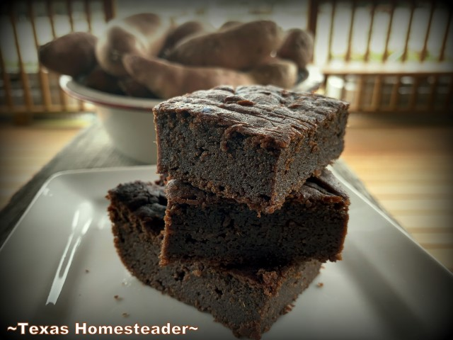 Sweet guilt-free brownies use only a tiny amount of honey to sweeten, but I add powdered stevia if I want it sweeter. #TexasHomesteader