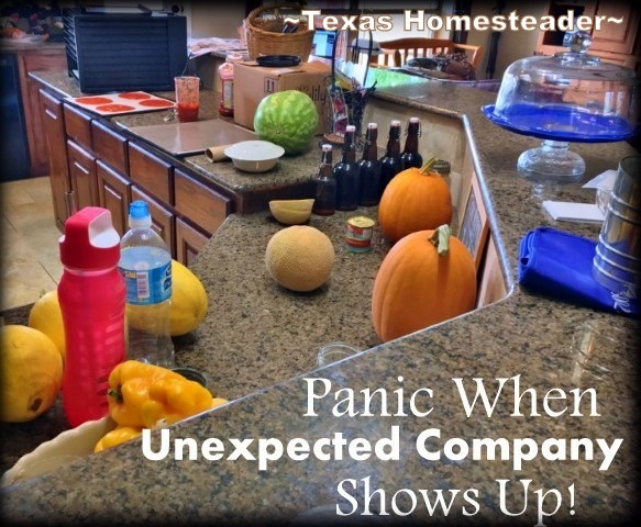 Do you feel panic when unexpected company shows? I polled our followers to see if they felt the same. Their responses were hilarious! #TexasHomesteader