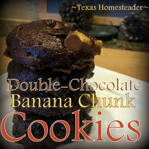 With the exception of the chocolate chips these cookies are sweetened with natural sugars of banana and honey. Fluffy, soft & chewy #TexasHomesteader